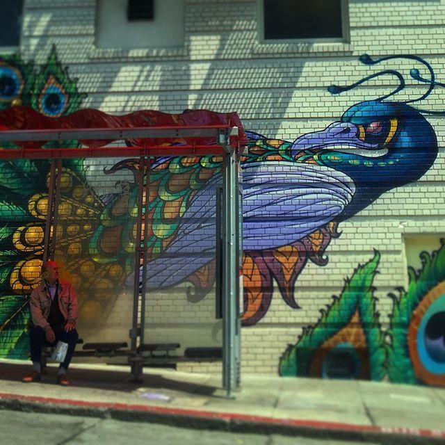 #sanfrancisco #sf #california #ca #castro #themission #howsfseessf #us #usa #america #hot #ilovela #california #cali #urbanart #ic_cities #city #love #igshots #justgoshoot #fabshots #popularpic #loveit #architecture #nowrongwaySF #untappedcities #upoutsf #tenderloin #streetart #graffiti