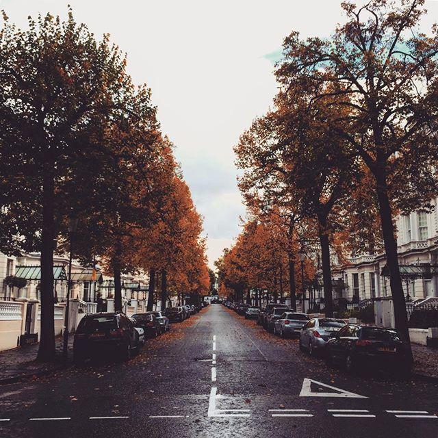 #london #england #londres #instalondon #londoner #iglondon #londra #uk #britain #ilovelondon #instahub #ic_cities #urban #city #town #igshots #justgoshoot #fabshots #implus_daily #popularpic #love #streetphotography #art #primeshots #street #architecture #hollandpark #fall #autumn