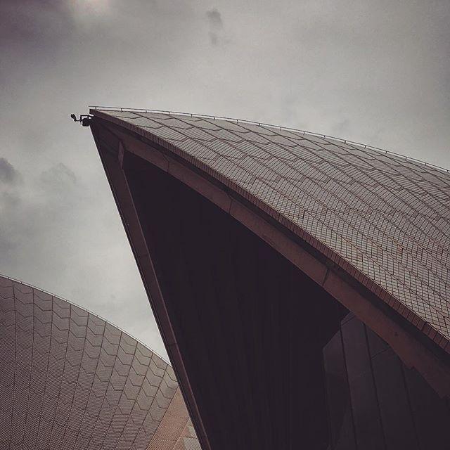 #australia #sydney #nsw #oz #newyear#sydneyoperahouse #sydneyharbourbridge #aussiegram #travel #sydneysider #seeaustralia#beautiful #amazing #summer #sun #sunset #love #iphoneonly #photooftheday #picoftheday #bestoftheday #instagramhub #instahub #igers #cityofsydney #seeaustralia #australiagram#bestofAustralia #instralia #ioz