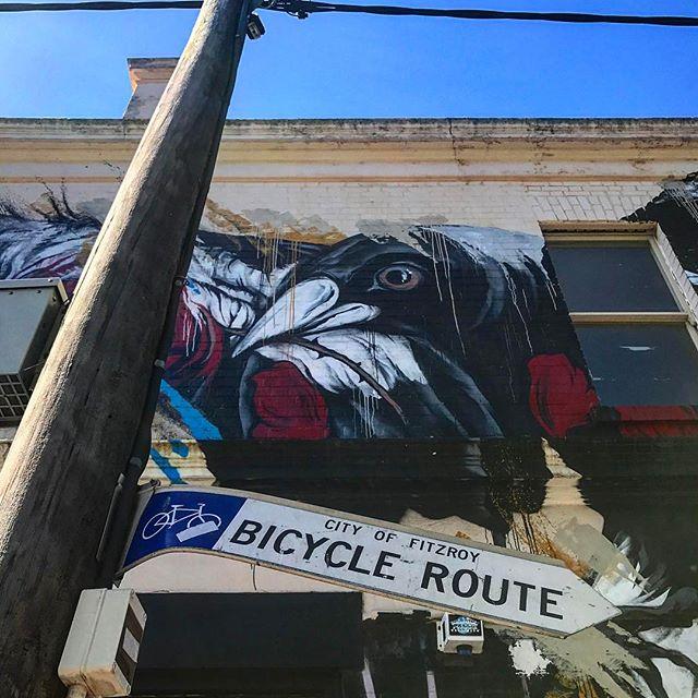 #fitzroy #melbournestreetart #onlymelbourne #melbournelife #melbournenow #melbourneILoveYou #melbourneblogger #igersmelbourne #Melbourne_insta #Melbonpix #australia #oz #aussiegram #travel #seeaustralia #beautiful #amazing #love #iphoneonly #photooftheday #picoftheday #bestoftheday #seeaustralia #australiagram #melbourne #summer #graffiti #streetart