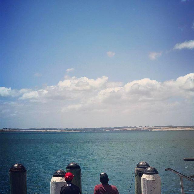 #fishing #philipisland #seagull #reallymelbourne #melbournetodo #onlymelbourne #Melbournelife #melbournenow #melbourneILoveYou #igersmelbourne #Melbourne_insta #Melbonpix #australia #oz #aussiegram #travel #seeaustralia #beautiful #love #iphoneonly #photooftheday #picoftheday #bestoftheday #seeaustralia #australiagram