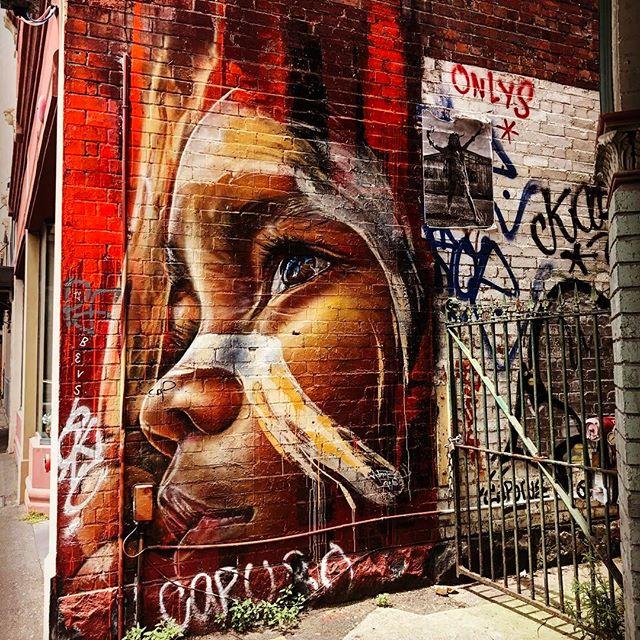 #melbourne #adnate #collingwood #graffiti #graffitiart #summer #architecture #onlymelbourne #Melbournelife #melbournenow #melbourneILoveYou #igersmelbourne #Melbourne_insta #Melbonpix #australia #oz #aussiegram #travel #seeaustralia #beautiful #love #iphoneonly #photooftheday #picoftheday #bestoftheday #seeaustralia #australiagram