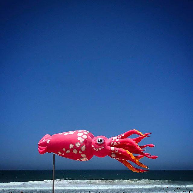 #surfersparadise #brisbane #brisbanecity #brisbanelife #queensland #beach #summer #travel #seeaustralia #beautiful #love #iphoneonly #photooftheday #picoftheday #bestoftheday #australiagram #thisisqueensland #visitnoosa #lovenoosa #noosasummer #visitsunshinecoast #discoverqueensland #visitbrisbane #thisisbrisbane #brisbaneanyday #brisbaneblogger #surfersbeach
