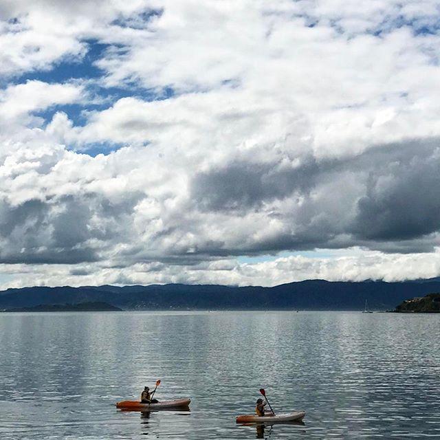 #newzealand #wellington #newzealandvacations #kiwi_photos #newzealandguide #northisland #ig_newzealand #splendid_earth #wildernessculture #earthfocus #fantastic_earth #earthpix #adventureculture #awesomeglobe #bucketlisters #tourtheplanet #nakedplanet #earthporn #earthofficial #discoverearth #lifeofadventure #summer #travel #beautiful #love #iphoneonly #photooftheday #picoftheday #bestoftheday