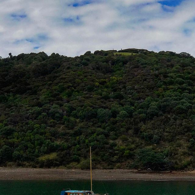 #newzealand #auckland #aucklandcity #waiheke #waihekeisland #boat #earthfocus #fantastic_earth #earthpix #adventureculture #awesomeglobe #tourtheplanet #earthofficial #discoverearth #lifeofadventure #summer #travel #beautiful #love #iphoneonly #photooftheday #picoftheday #bestoftheday