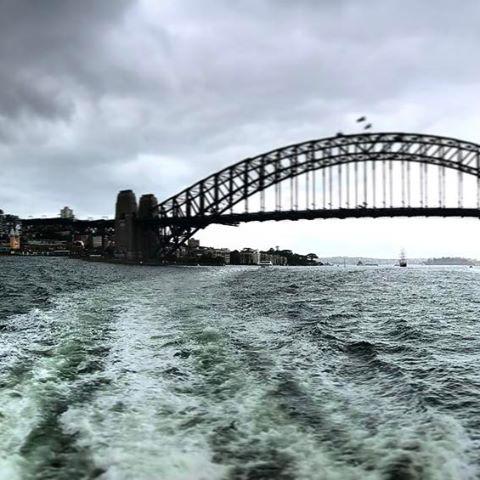 #sydneyoperahouse #sydneyharbourbridge #sydneyharbourbridge #nsw #oz #aussiegram #travel #sydneysider #seeaustralia #gay #beautiful #love #iphoneonly #photooftheday #picoftheday #bestoftheday #instagramhub #instahub #igers #cityofsydney #seeaustralia #australiagram#bestofAustralia #instralia #ioz #architecture