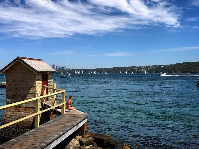 #sydney #watsonsbay #beach #sun #aussiegram #travel #sydneysider #seeaustralia #blue #beautiful #love #iphoneonly #photooftheday #picoftheday #bestoftheday #instagramhub #instahub #igers #cityofsydney #seeaustralia #australiagram #bestofAustralia #instralia #ioz #architecture