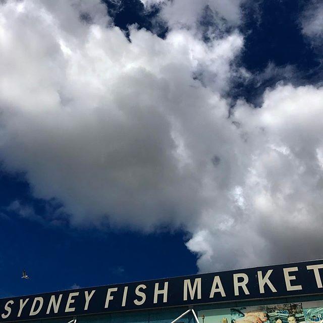 #sydney #sydneyfishmarket #clouds #sydneyeats #seeaustralia #beautiful #love #iphoneonly #photooftheday #picoftheday #bestoftheday #instagramhub #instahub #igers #cityofsydney #seeaustralia #australiagram #bestofAustralia #instralia #ioz #architecture