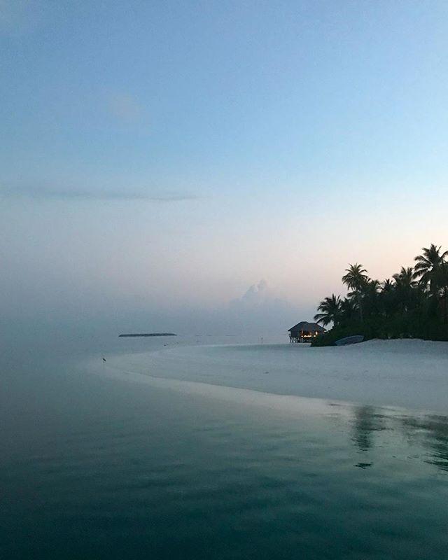 #maldives #conrad #travel #instagood #picoftheday #palmtrees #sun #rangali #maldives_allshots #easter #traveling #instatravelhub #holiday #vacation #travelling #hot #love #ilove #instatravel #tourist #instalive #instalife #tourism #hot #love #maldivesislands #maldives2018 #conradmaldives #stayinspired