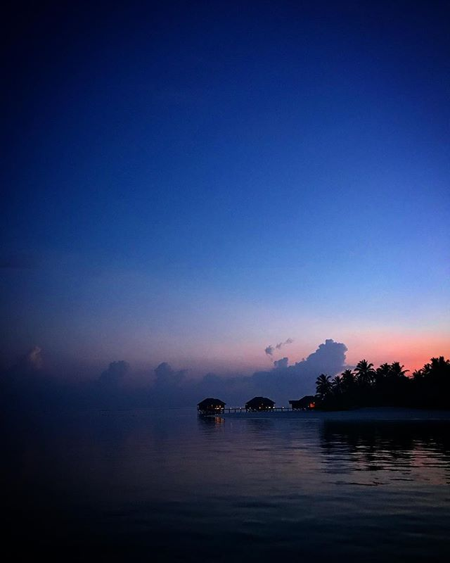 #maldives #conrad #travel #instagood #picoftheday #palmtrees #sun #rangali #maldives_allshots #easter #traveling #instatravelhub #holiday #vacation #travelling #hot #love #ilove #instatravel #instalive #instalife #tourism #hot #love #maldivesislands #maldives2018 #conradmaldives #stayinspired #maldiveslovers