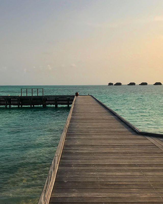 #male #maldives #conrad #travel #instagood #picoftheday #palmtrees #sun #rangali #maldives_allshots #easter #traveling #instatravelhub #holiday #vacation #travelling #hot #love #ilove #instatravel #tourist #instalive #instalife #tourism #hot #love #maldivesislands #maledives2018